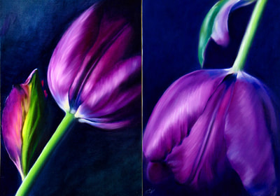 Elena Valerie, The Tulip Couple