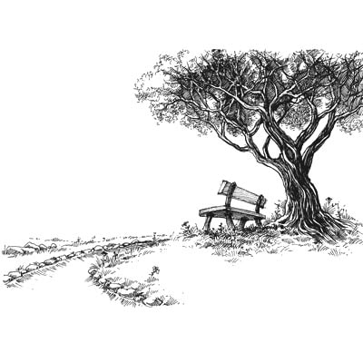 Draw a Tree and Bench Picture