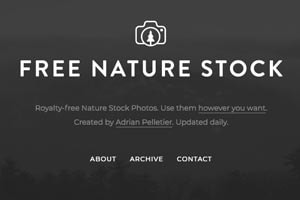 Free Nature Stock Picture