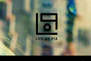 Life of Pic Link Picture