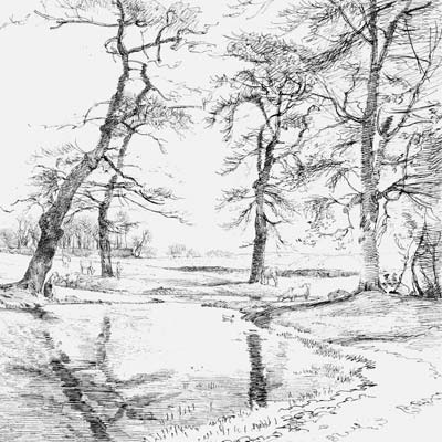 Landscape Drawing 2 Picture