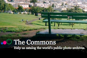 The Commons Picture