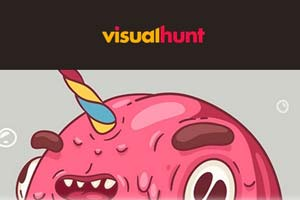 Visual Hunt Logo Picture