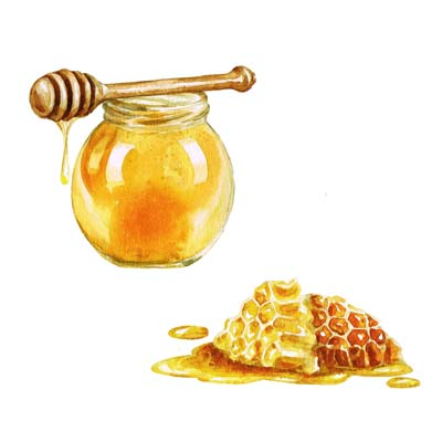 Paint Honey Pot Picture