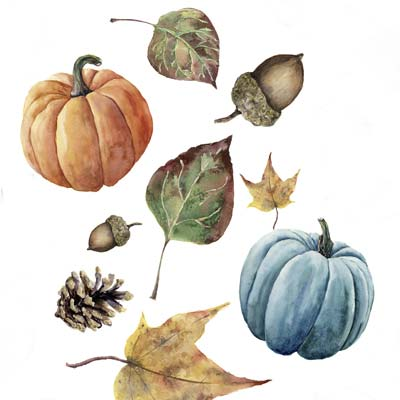 Draw Pumpkins Picture